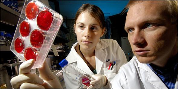 Омоложение стволовыми клетками