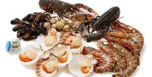 Морские морепродукты