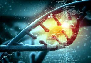 Суть генетики