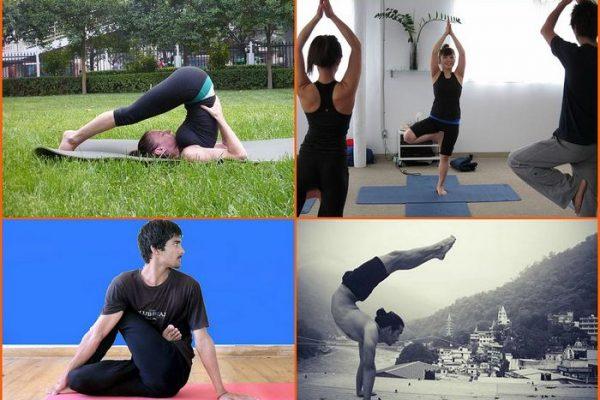 Какие есть виды йоги