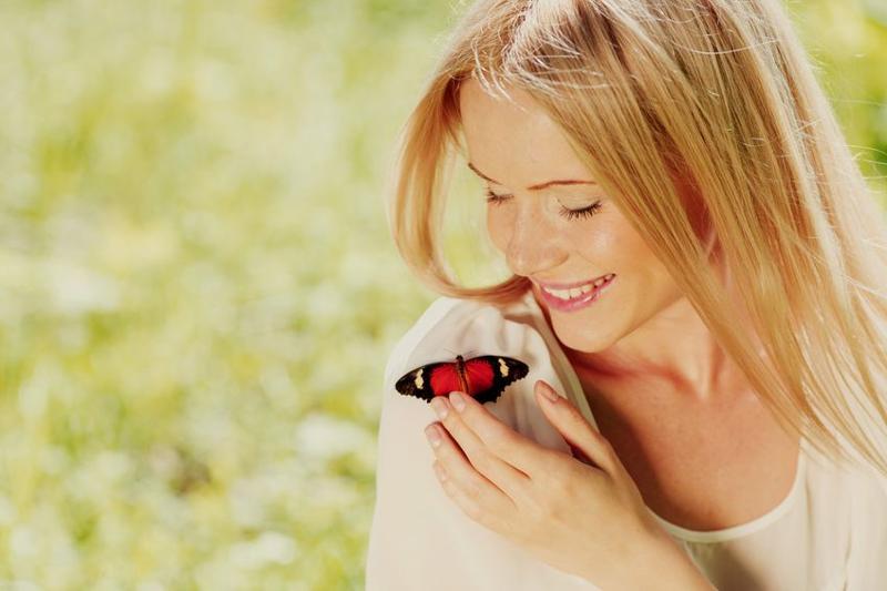 К чему на человека садится бабочка