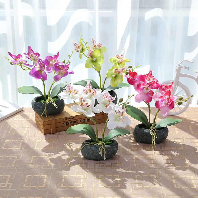 Почему нельзя держать дома орхидеи: народные приметы