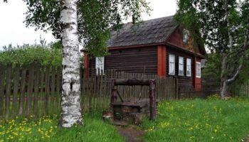 Почему нельзя сажать березу возле дома согласно народным поверьям и суевериям