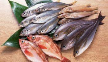 К чему видеть во сне рыбу: точные толкования от Ванги и Фрейда