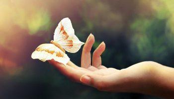 Эти 5 привычек изменят вашу жизнь к лучшему