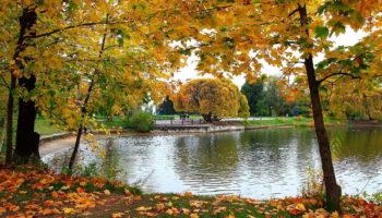 Сентябрьские приметы: что сулит первый месяц осени