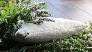 Бессонница, прощай: 5 трав, которые можно добавить в подушку, если плохо засыпаете