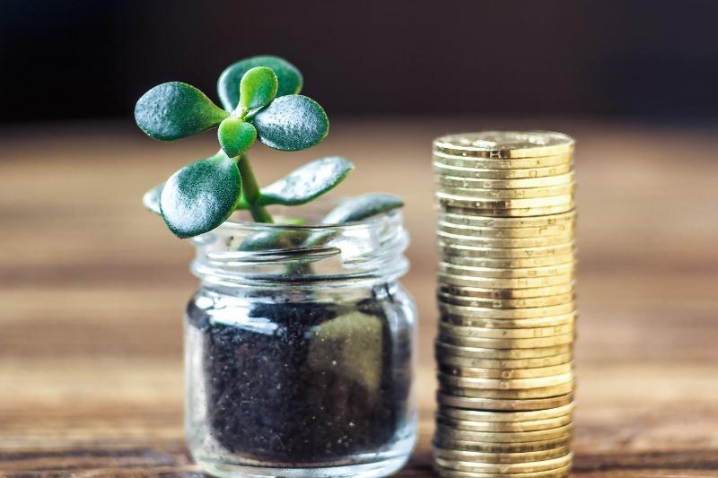 От каких вещей нужно избавиться, чтобы привлечь деньги