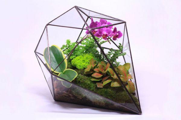 Террариум для цветов